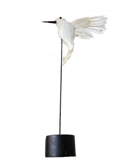 Sier vogeltje