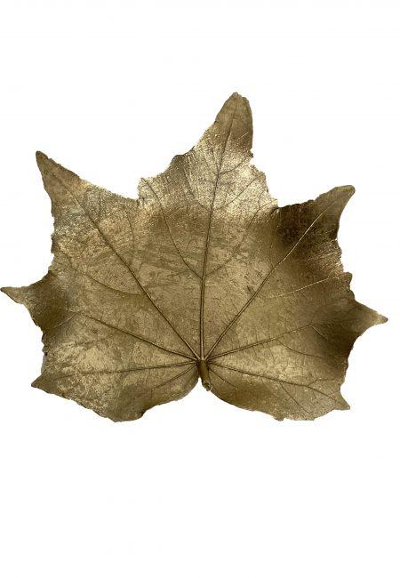 Gouden schaaltje herfstblad